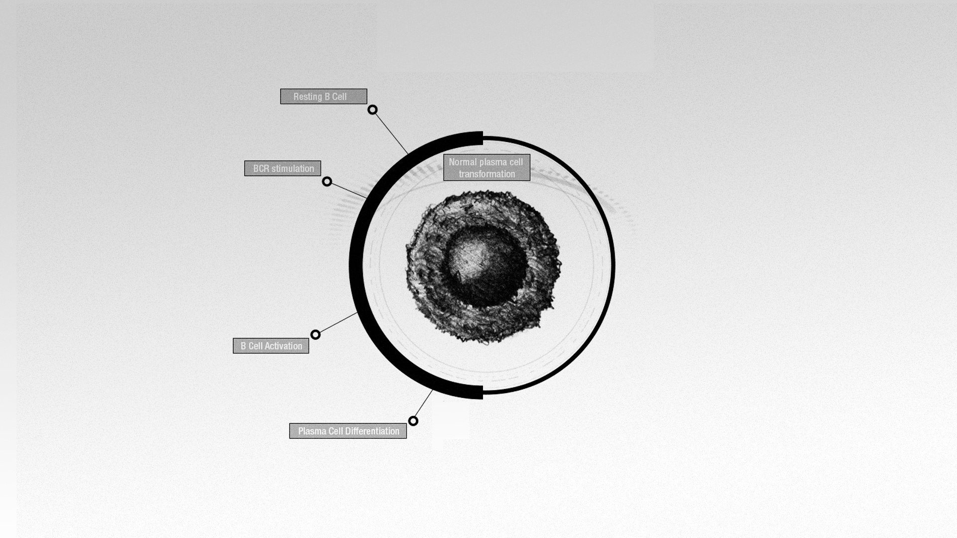 disease_pathway2